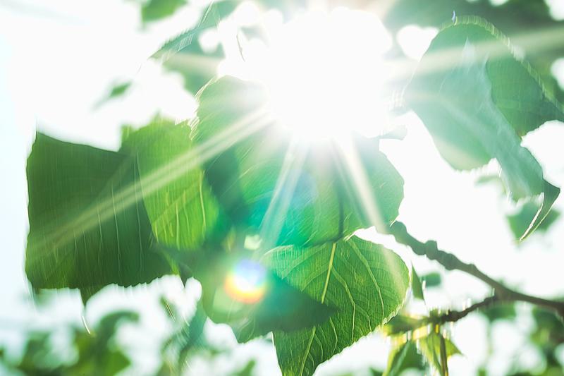 Fotografia artistica de rayos solares