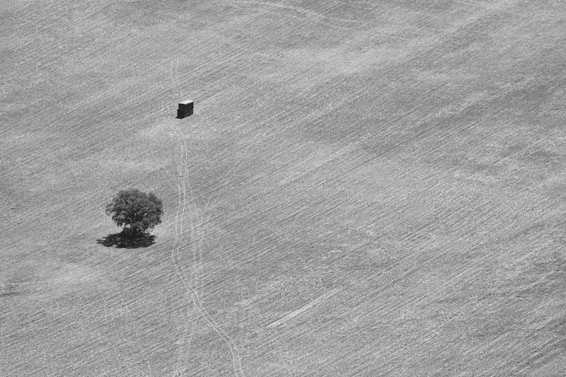 Montaña de árbol y cuadrado