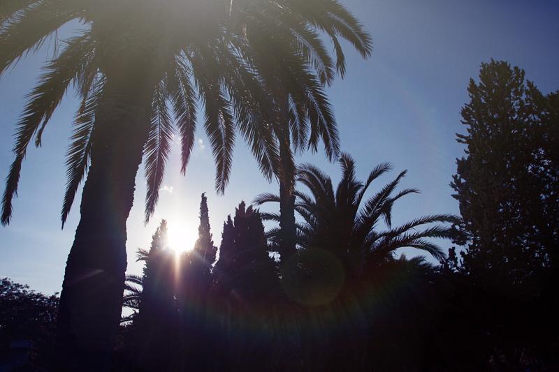 Antes que ver el sol