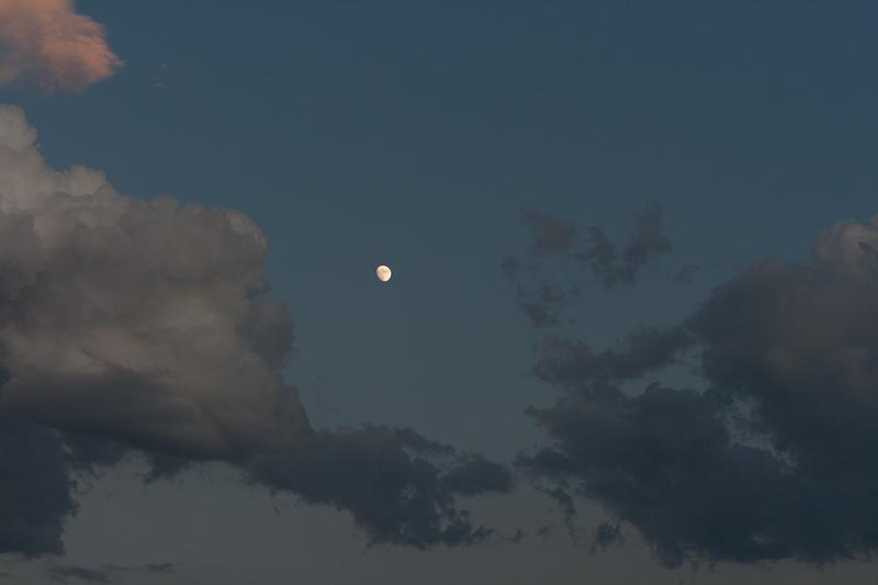 Desesperando a la luna