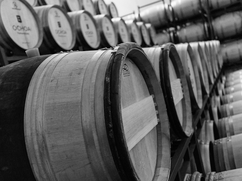 Latidos de vino