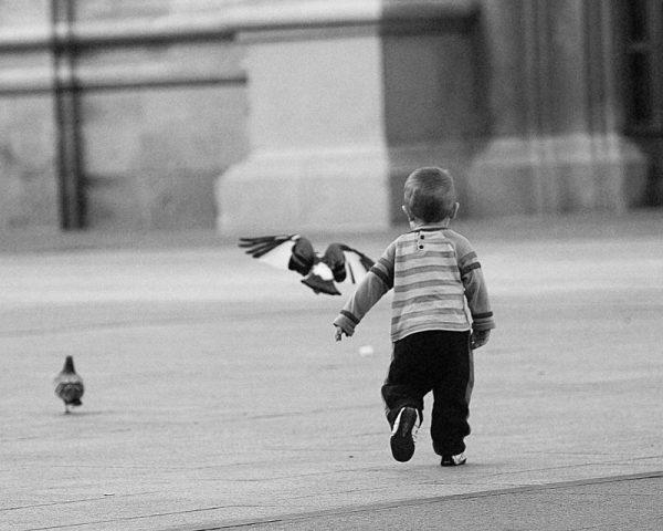 02_caminandonos_la_vida