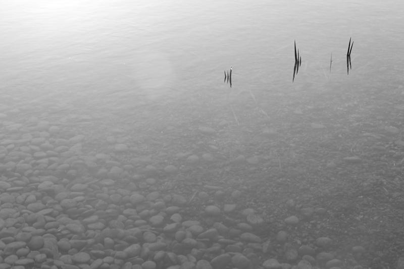 Agua y paz
